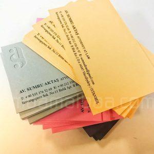 tipo-baskili-avukat-kartviziti
